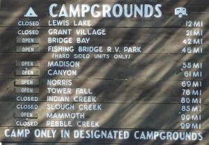 beaucoup de campings sont encore fermés à cause des ours