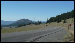 à partir de là, c'est plus de 85 Km de descente