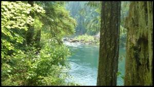 Susan Creek : des indiens venaient déjà ici il y a 7700 ans.