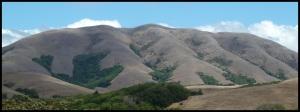 Black Mountain