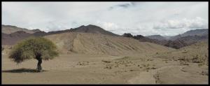 Dunes pétrifiées