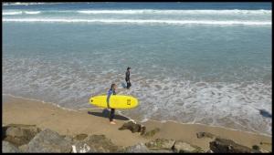 là je travaille mon regard surfeur vers l'horizon